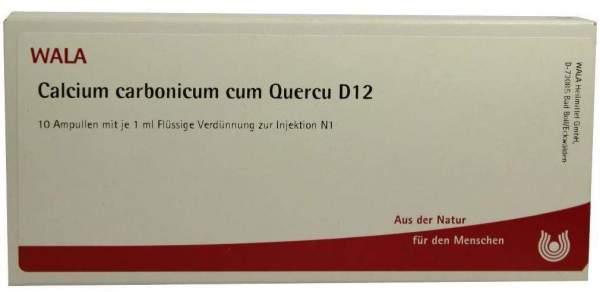 Calcium Carbonicum Cum Quercu D 12 Ampullen 10 X 1 ml
