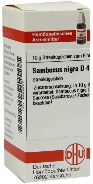 Sambucus Nigra D 4 Globuli