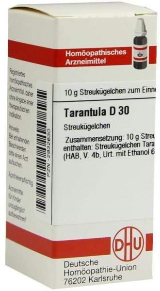 Tarantula D 30 Globuli