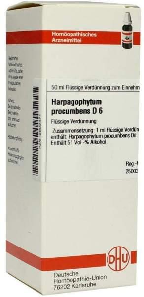 Harpagophytum Procumbens D6 Dhu 50 ml Dilution