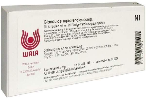 Wala Glandulae Suprarenales Comp. 10 X 1ml Ampullen