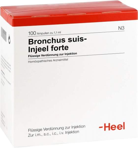 Bronchus Suis Injeel Forte 100 Ampullen