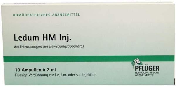 Ledum Hm Injekt 10 Ampullen