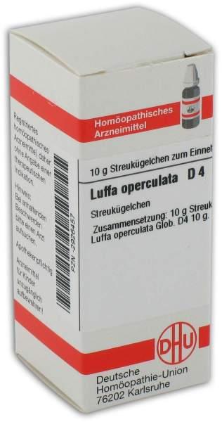 Luffa Operculata D4 10 G Globuli