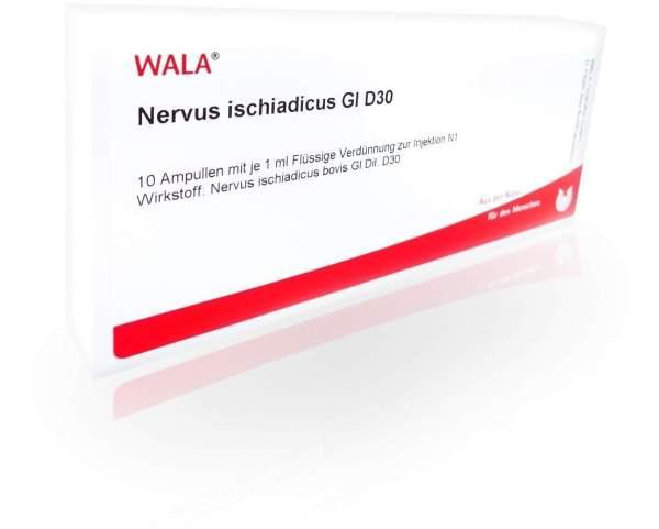 Nervus Ischiadicus Gl D 30 Ampullen