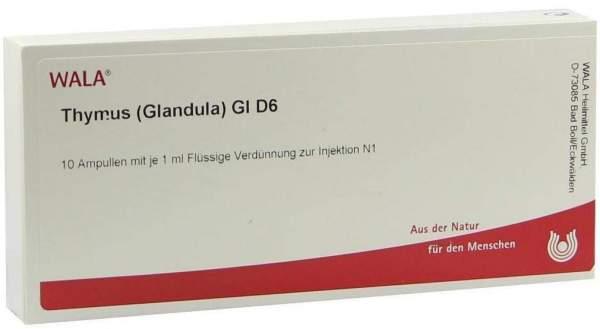 Thymus Glandula Gl D 6 Ampullen