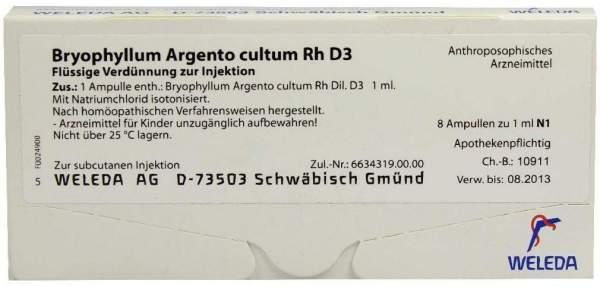 Bryophyllum Argento cultum Rh D 3 Weleda 8 x 1 ml Ampullen