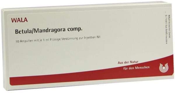 Betula-Mandragora Comp. Ampullen